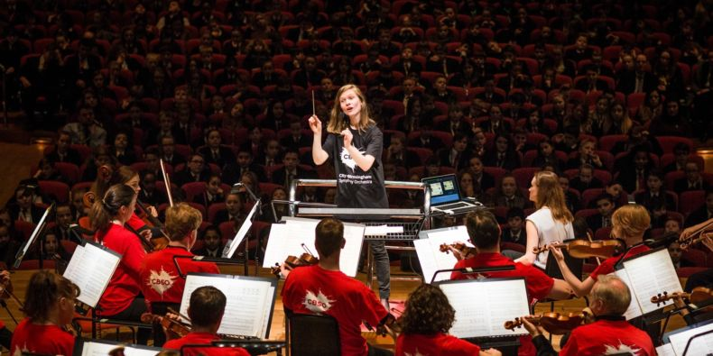 Ks2 Young Persons Guide To The Orchestra.